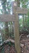 馬那邦山(錦雲山莊登山口):DSC_0565.JPG
