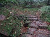 七星山的泥土步道100.11.29.~101.1.3.下午:DSC02037.JPG