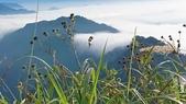 馬那邦山(錦雲山莊登山口):DSC_0666.JPG