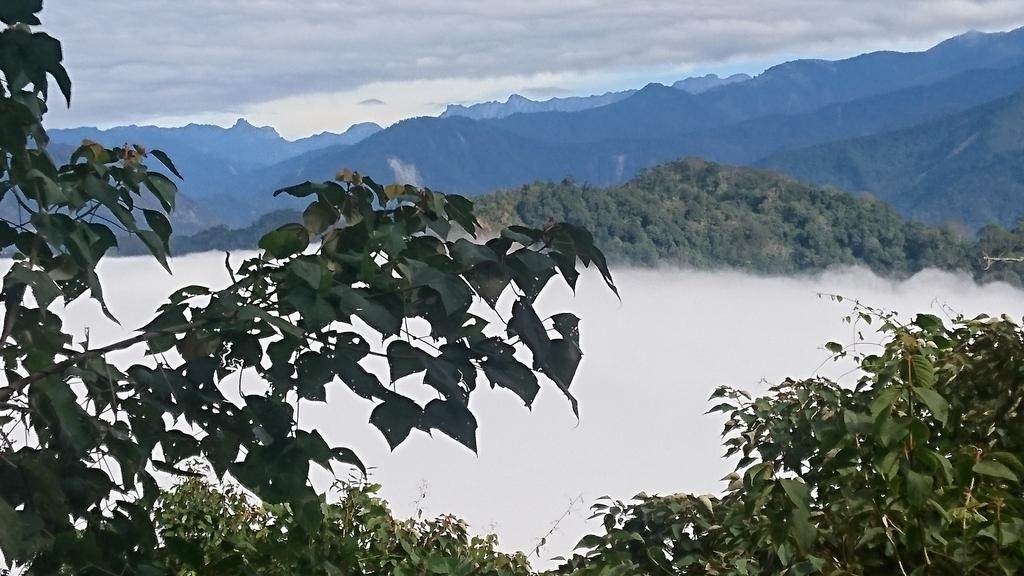 馬那邦山(錦雲山莊登山口):DSC_0499.JPG