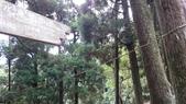 頂湖~水車寮步道~水尾山~二子坪親山步道:DSC_0217.JPG