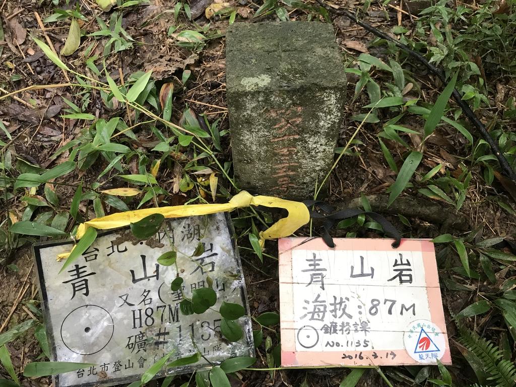 IMG_5149.JPG - 旅聯網十四周年版主登山活動