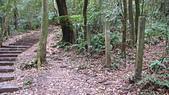 七星山的泥土步道100.11.29.~101.1.3.下午:DSC03194.JPG
