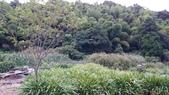 頂湖~水車寮步道~水尾山~二子坪親山步道:DSC_0239.JPG