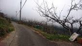 馬那邦山(錦雲山莊登山口):DSC_0384.JPG