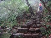 七星山的泥土步道100.11.29.~101.1.3.下午:DSC02042.JPG