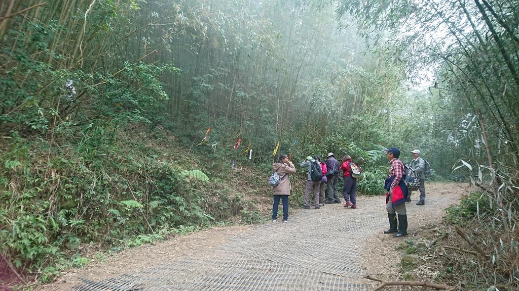 馬那邦山(錦雲山莊登山口):DSC_0454.JPG