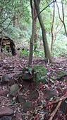 七星山的泥土步道100.11.29.~101.1.3.下午:DSC03200.JPG