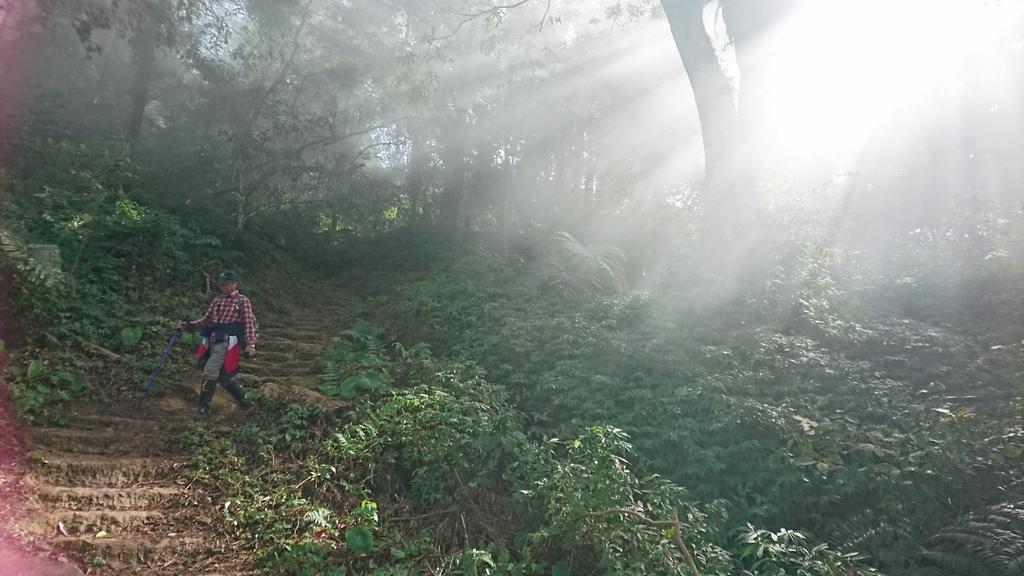 馬那邦山(錦雲山莊登山口):DSC_0466.JPG