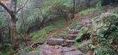 七星山的泥土步道100.11.29.~101.1.3.下午:DSC02044-45.JPG