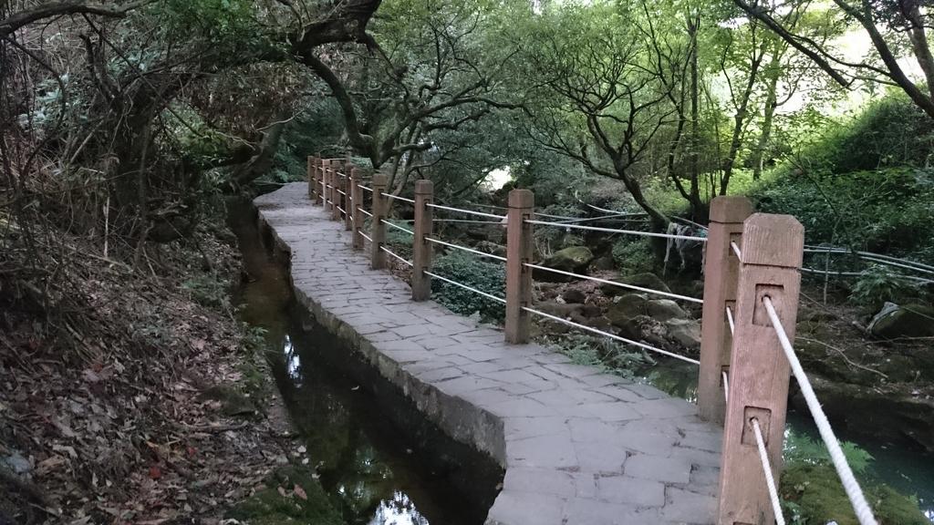 頂湖~水車寮步道~水尾山~二子坪親山步道:DSC_0242.JPG