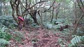 七星山的泥土步道100.11.29.~101.1.3.下午:DSC03202.JPG