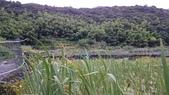 頂湖~水車寮步道~水尾山~二子坪親山步道:DSC_0245.JPG