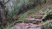 七星山的泥土步道100.11.29.~101.1.3.下午:DSC02046.JPG