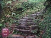 七星山的泥土步道100.11.29.~101.1.3.下午:DSC02047.JPG