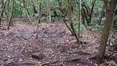 七星山的泥土步道100.11.29.~101.1.3.下午:DSC03204.JPG