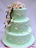 生日蛋糕圖片:c426a7a0bf6e75180914a5671e90d2fb.jpg