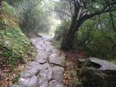 七星山的泥土步道100.11.29.~101.1.3.下午:DSC02050.JPG