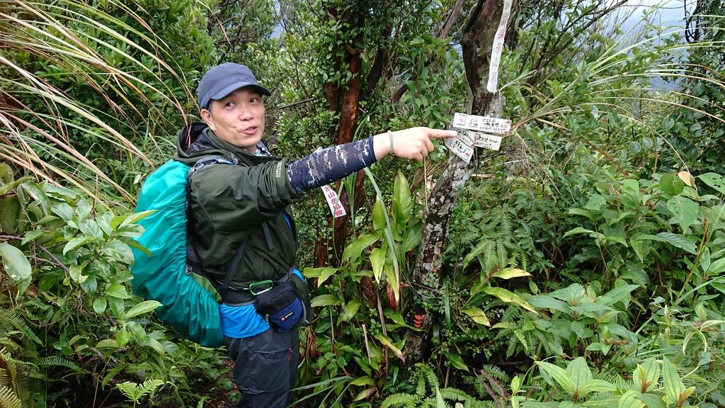 DSC_0438.JPG - 旅聯網十四周年版主登山活動