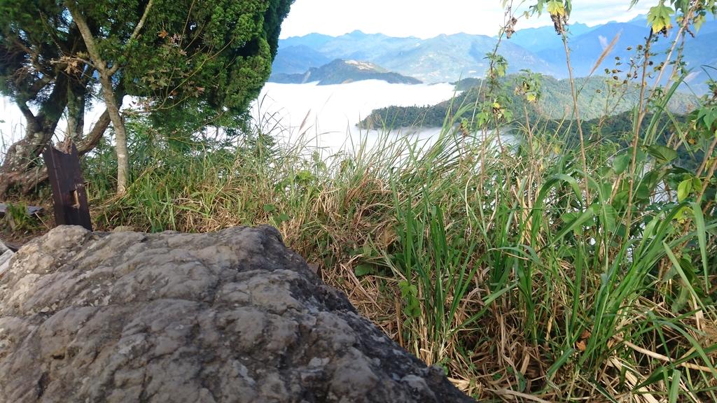 馬那邦山(錦雲山莊登山口):DSC_0647.JPG