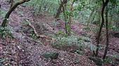 七星山的泥土步道100.11.29.~101.1.3.下午:DSC03210.JPG
