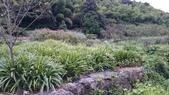 頂湖~水車寮步道~水尾山~二子坪親山步道:DSC_0237.JPG