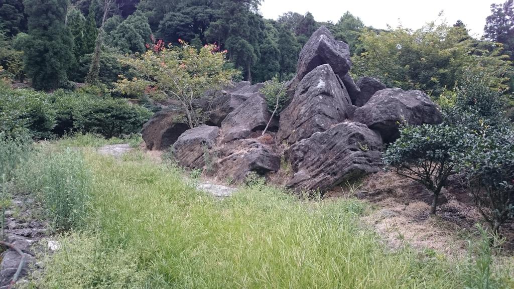 頂湖~水車寮步道~水尾山~二子坪親山步道:DSC_0284.JPG