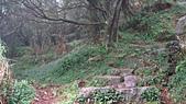 七星山的泥土步道100.11.29.~101.1.3.下午:DSC02054.JPG