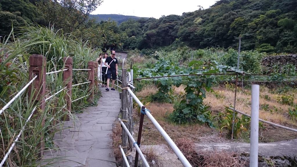 頂湖~水車寮步道~水尾山~二子坪親山步道:DSC_0235.JPG