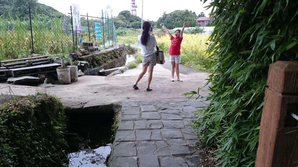 頂湖~水車寮步道~水尾山~二子坪親山步道:DSC_0243.JPG