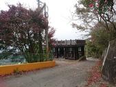 馬那邦山(錦雲山莊登山口):DSC_0381.JPG