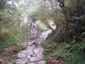 七星山的泥土步道100.11.29.~101.1.3.下午:DSC02060.JPG