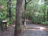 七星山的泥土步道100.11.29.~101.1.3.下午:DSC01996.JPG