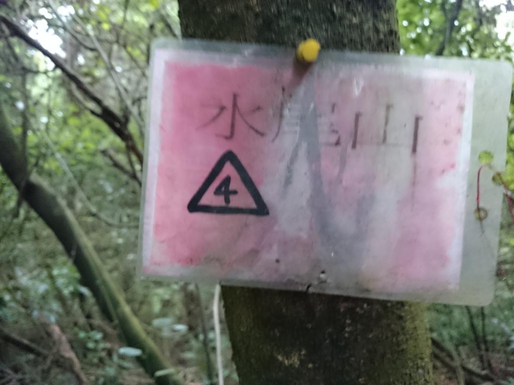 頂湖~水車寮步道~水尾山~二子坪親山步道:DSC_0197.JPG