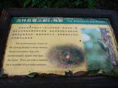 七星山的泥土步道100.11.29.~101.1.3.下午:DSC01997.JPG