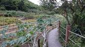 頂湖~水車寮步道~水尾山~二子坪親山步道:DSC_0233.JPG