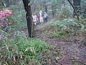 七星山的泥土步道100.11.29.~101.1.3.下午:DSC03222.JPG