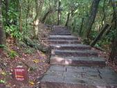 七星山的泥土步道100.11.29.~101.1.3.下午:DSC01998.JPG
