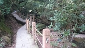 頂湖~水車寮步道~水尾山~二子坪親山步道:DSC_0241.JPG