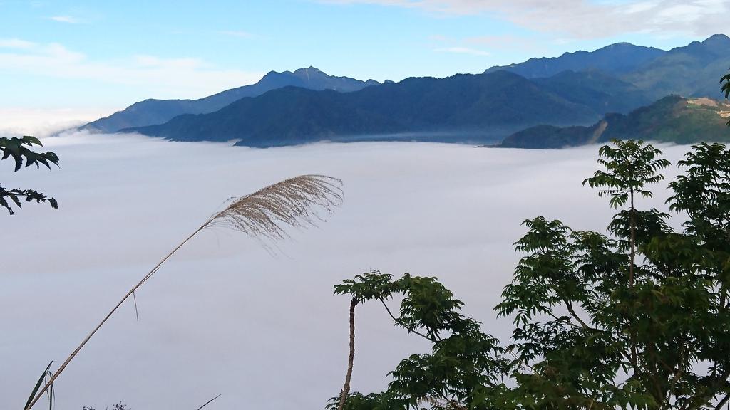 馬那邦山(錦雲山莊登山口):DSC_0645.JPG