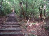 七星山的泥土步道100.11.29.~101.1.3.下午:DSC01999.JPG