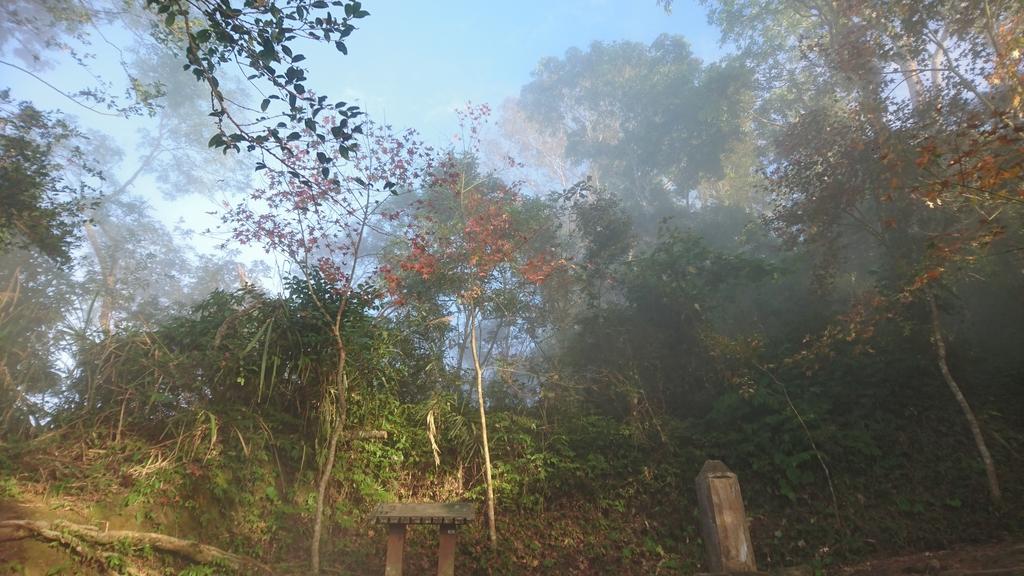 馬那邦山(錦雲山莊登山口):DSC_0675.JPG