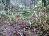 七星山的泥土步道100.11.29.~101.1.3.下午:DSC03223.JPG