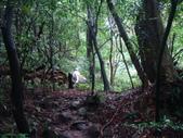 七星山的泥土步道100.11.29.~101.1.3.下午:DSC02000.JPG