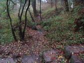七星山的泥土步道100.11.29.~101.1.3.下午:DSC02067.JPG