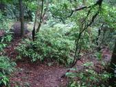 七星山的泥土步道100.11.29.~101.1.3.下午:DSC02001.JPG