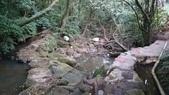 頂湖~水車寮步道~水尾山~二子坪親山步道:DSC_0271.JPG