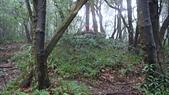 七星山的泥土步道100.11.29.~101.1.3.下午:DSC03224.JPG