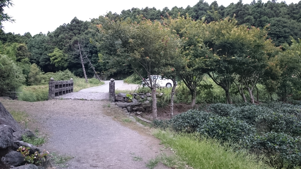 頂湖~水車寮步道~水尾山~二子坪親山步道:DSC_0290.JPG