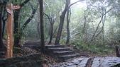 七星山的泥土步道100.11.29.~101.1.3.下午:DSC03225.JPG